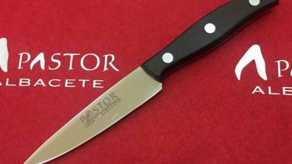 Cuchillo Cocina Pastor Puntilla de 10 cm